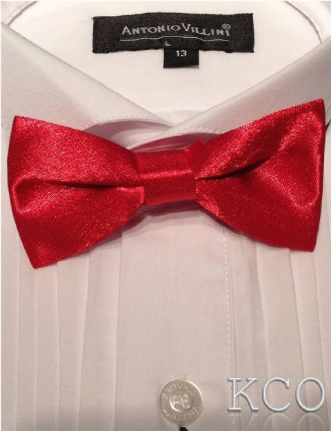 Bow Tie Red~Special Occasion